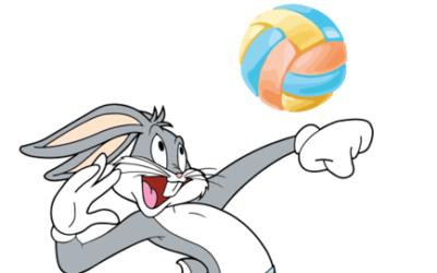 Volleyball Weihnachts-Turnier