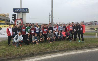 Linz-Viertel-Marathon 2019