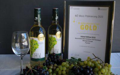 Gold für die HLW Kirchdorf